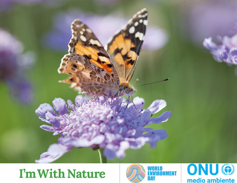 5 June World Environment Day -One Day with Nature